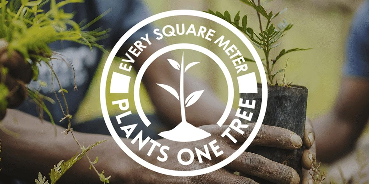 Every square meter of our solar photovoltaic glass plants one tree
